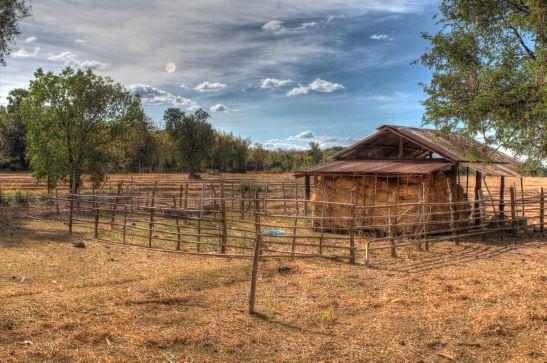 Laos Reisen Foto Don Koh Island 29